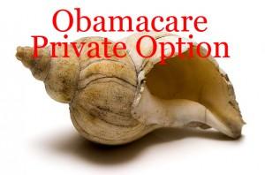 Obama care best options